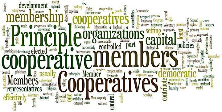 We Own It!  CGC Community Virtual Meetup image