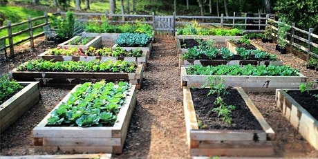 Have you been wondering about gardening in raised beds?| tickets