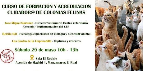 Curso de Formación y Acreditación Cuidador@ de Colonias Felinas entradas