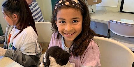 Animal Discoveries Summer Camp at Pasadena Humane - Week 5 tickets