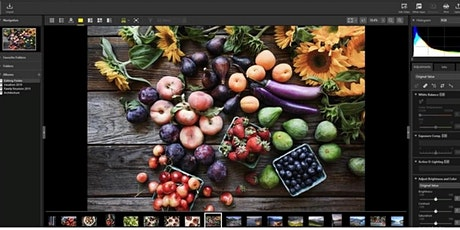 Nikon NX Studio with Vincent Versace: One program does it all - Live Online tickets