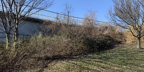 Vegetation Management at 14th St Bridge tickets