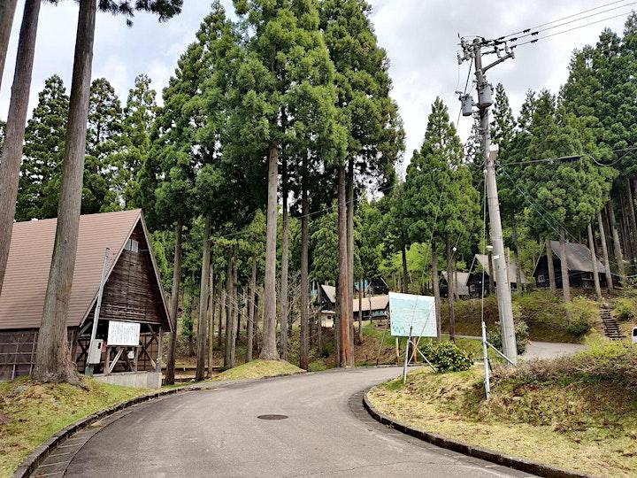 English Dinosaur Camp - Fukui / Shiga / Gifu image