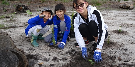 National Tree Day 2021 Community Event - 4 July 2021 tickets
