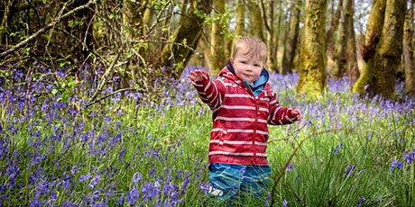 Nature Tots at RSPB Arne tickets