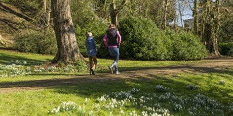 Timed entry to Newark Park (17 May - 23 May) tickets