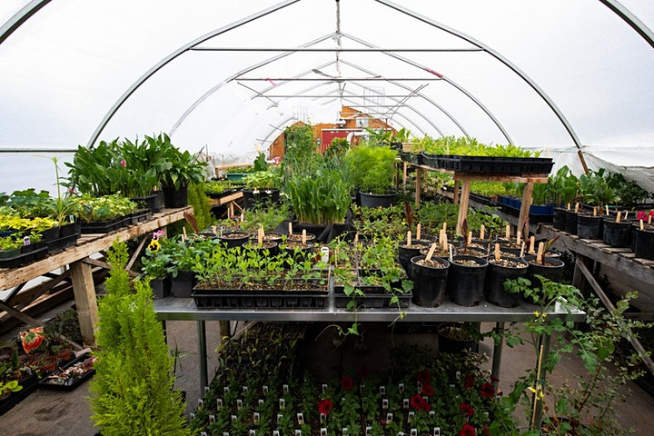 BWM+CC Garden Thyme Pop Up! image