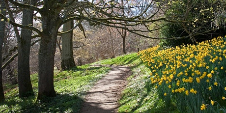 Timed entry to Winkworth Arboretum (17 May - 23 May) tickets