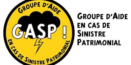 GASP -  Accompagnement au Plan de Sauvegarde des Biens Culturels billets