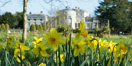 Timed entry to Shugborough Estate (17 May - 23 May) tickets