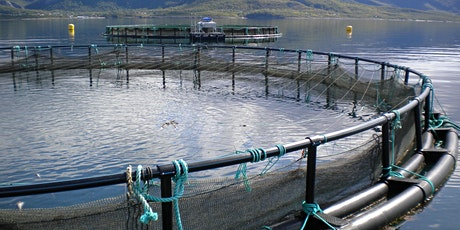Aquaculture Careers Event 2021 - Careers Panel Discussion tickets