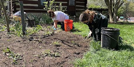 Gardening Volunteer Day at Wolf Trap tickets