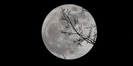 Full Moon Healing Ceremony and Drumming Circle by the Fire tickets