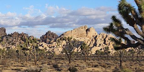 Geology:Creation of the Joshua Tree Landscape (Geosciences x460.4 1.0 unit) tickets