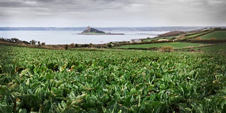 Making Cornwall  a Sustainable Food Place?: initial research findings tickets