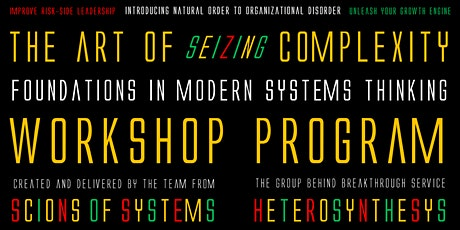 The Art Of Seizing Complexity:  Foundations in Modern Systems Thinking biglietti
