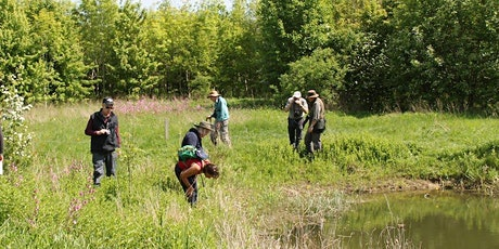 BioBlitz in the Heart of England Forest tickets