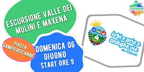CPG 2021 - ESCURSIONE VALLE DEI MULINI E MAXENA by Erbi Prie Antighe Vie biglietti