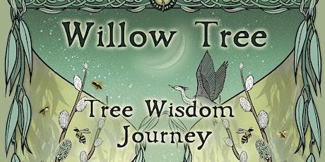 Willow Tree - Tree Wisdom Journey - Online Workshop tickets