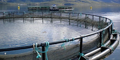 Aquaculture Careers Event 2021 - Grant and Scholarship Writing Workshop tickets