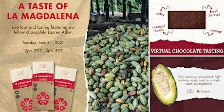 Virtual cacao farm tour & chocolate tasting tickets