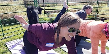Goat Yoga Texas - Sun, June 13 @ 10am tickets