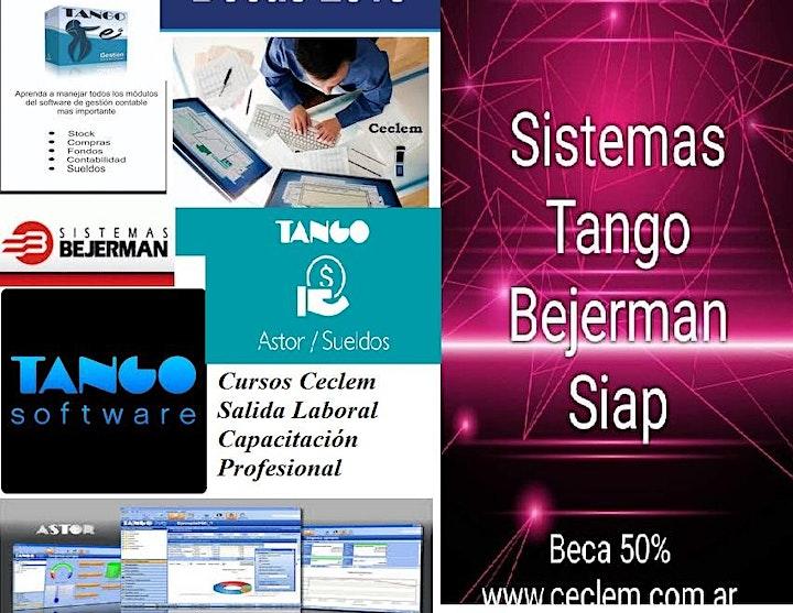 Imagen de Curso Operador Sistemas TANGO + BEJERMAN + Excel Beca Oficial