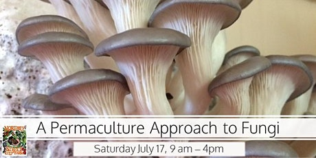 A Permaculture Approach to Fungi tickets
