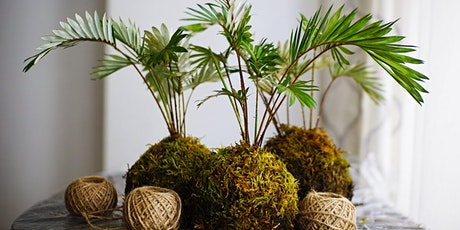 Learn the Art of Kokedama : A Makerspace Program tickets