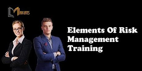 Elements of Risk Management 1 Day Training in San Luis Potosi boletos
