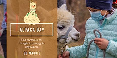 Alpaca Day biglietti