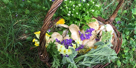 Spring Foraging Walk tickets