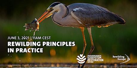 Rewilding Principles in Practice tickets