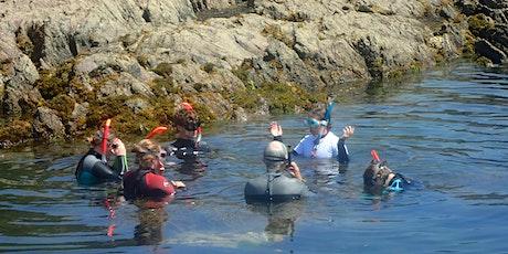 National Marine Week Snorkel Safari tickets