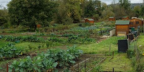 Un dimanche au jardin : compostage billets
