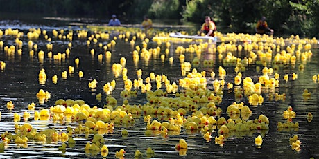St. Mark's Annual Duck Race  in association with June Fest (Online Event) tickets