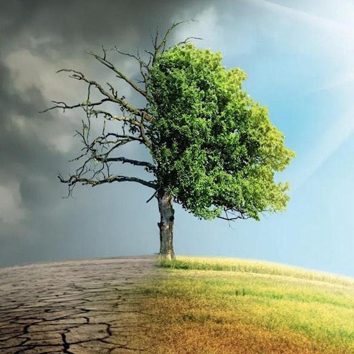 Conversaciones sobre el Carbono image