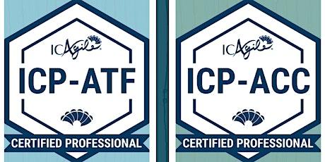 Bootcamp Agile Facilitation + Agile Coaching (ICP-ATF + ICP-ACC) Tickets
