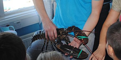 Lobster Hatchery Talk tickets