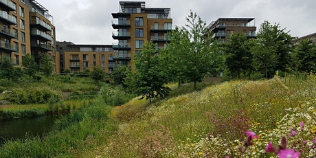 Biodiversity Net Gain & the Environment Bill - Local Authority Councillors tickets