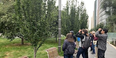 Salesforce Park Birding Walk tickets
