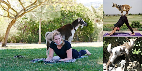 South Bay Baby Goat Yoga tickets