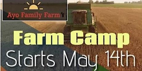 FARM CAMP tickets