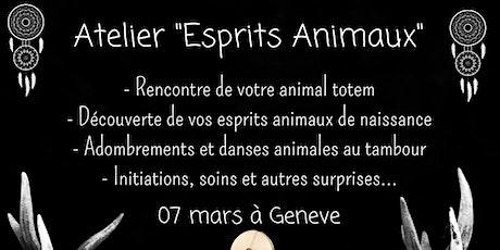 Atelier esprits animaux de force billets
