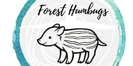Forest Humbugs Bumps & Babies Sessions June - July 2021 tickets