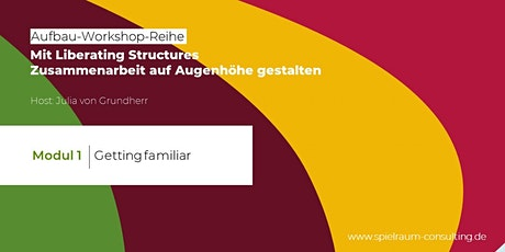 Modul 1 - Liberating Structures Aufbau-Workshop-Reihe Tickets