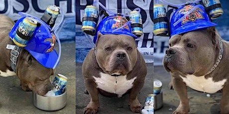Barks and Brews tickets