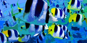Kids School Holidays 'How to Paint Tropical Fish'...