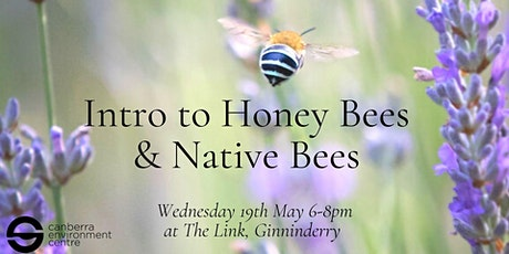 Intro to Honey Bees and Native Bees tickets