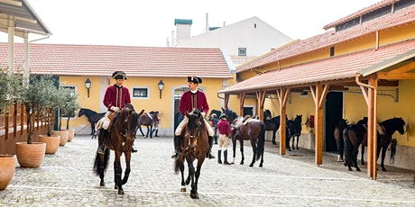 Webinar para Profissionais de Turismo - Escola Portuguesa de Arte Equestre bilhetes